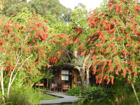 Gartencottage der Tsitsikamma Lodge in kleiner Gruppe