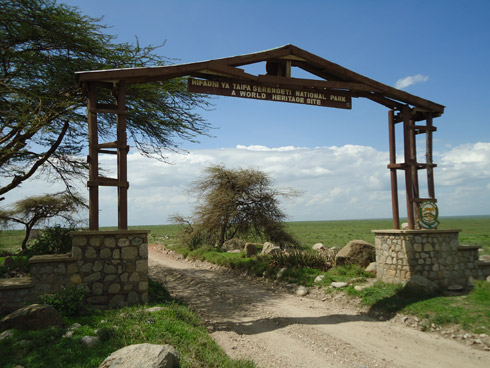 Serengeti Gate