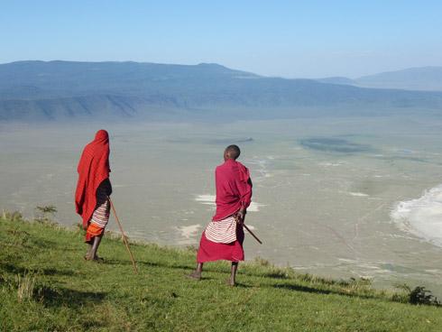 Breede Ngorngoro Masaii