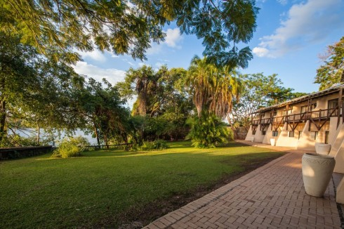 Botswana 3 Chobe-Safari-Lodge Chamaeleon