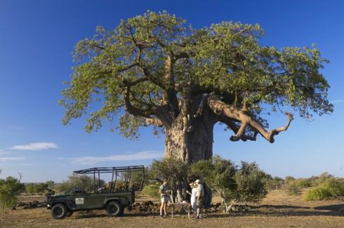 Botswana 8 Pirsch Fremdenverkerhsamt