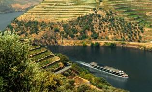 Weinlese auf dem Douro – A-ROSA Flusskreuzfahrt