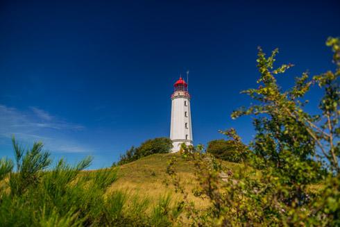 Ihr erster Stopp: Die wild-romantische Insel Hiddensee!