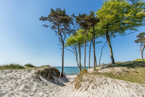 Entspannung pur am tollen Ostseestrand!