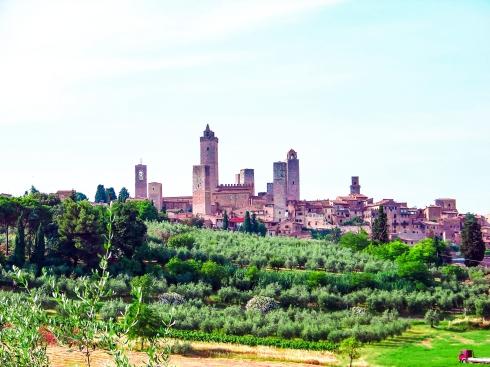 Stadt, Ansicht, Olivenbaum, Feld, Kirche, Turm, Türme,